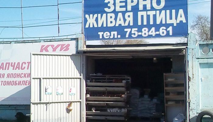 Комбикорма, зерно, куры Ульяновск